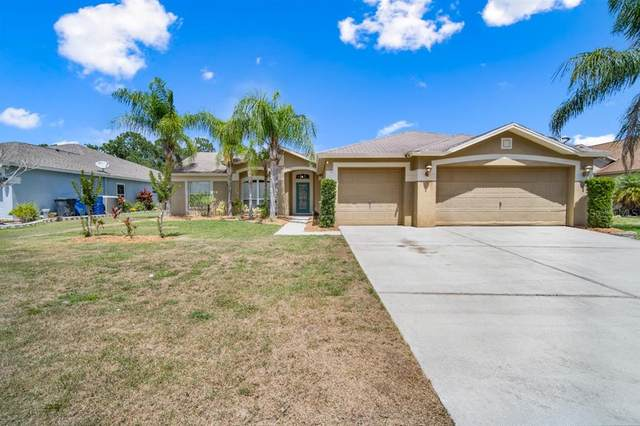 10328 Tarragon Drive, Riverview, FL 33569 (MLS #T3312170) :: Dalton Wade Real Estate Group