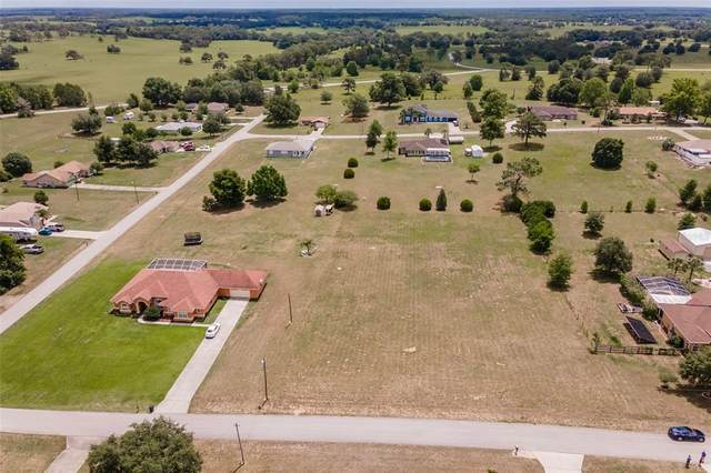 8847 S Filly Point, Inverness, FL 34452 (MLS #T3312206) :: Godwin Realty Group