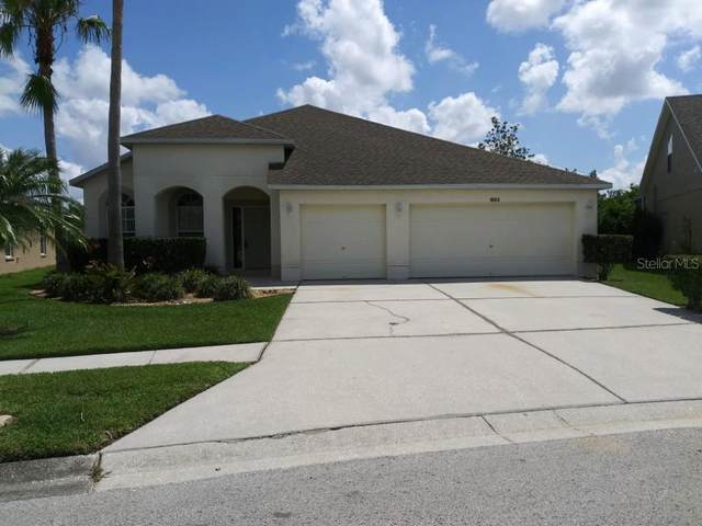 18313 Cypress Haven Drive, Tampa, FL 33647 (MLS #T3312215) :: Cartwright Realty