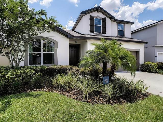 12377 Streambed Drive, Riverview, FL 33579 (MLS #T3312220) :: Dalton Wade Real Estate Group