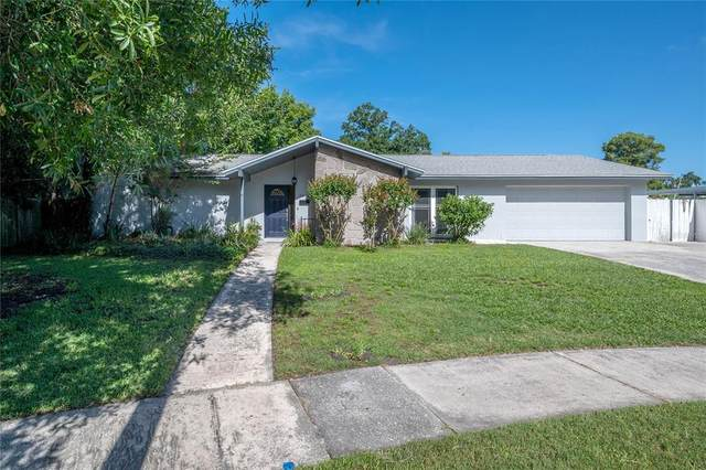 7004 Larimer Court, Tampa, FL 33615 (MLS #T3312224) :: BuySellLiveFlorida.com