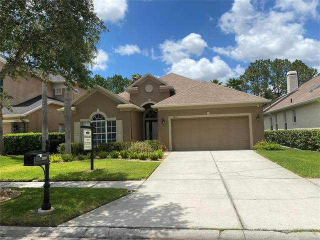 11247 Blacksmith Drive, Tampa, FL 33626 (MLS #T3312245) :: Cartwright Realty