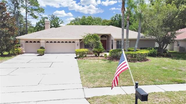 16141 Carden Drive, Odessa, FL 33556 (MLS #T3312248) :: Delgado Home Team at Keller Williams