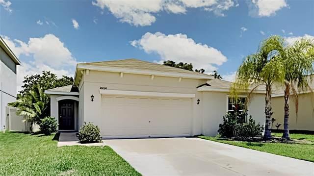 10034 Crested Fringe Drive, Riverview, FL 33578 (MLS #T3312255) :: BuySellLiveFlorida.com