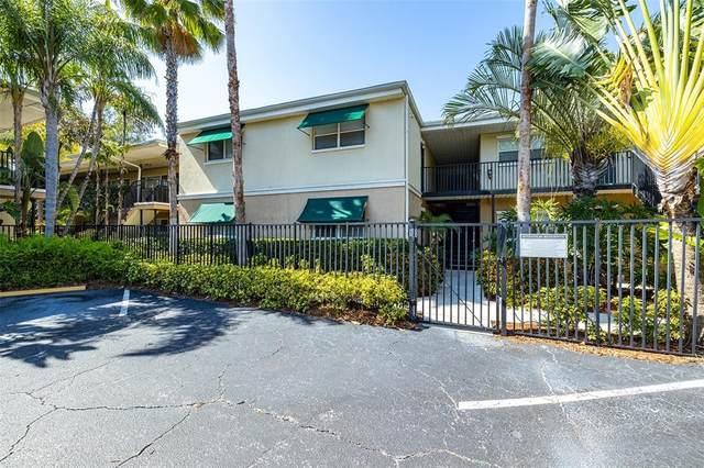 212 S Church Avenue #305, Tampa, FL 33609 (MLS #T3312256) :: BuySellLiveFlorida.com