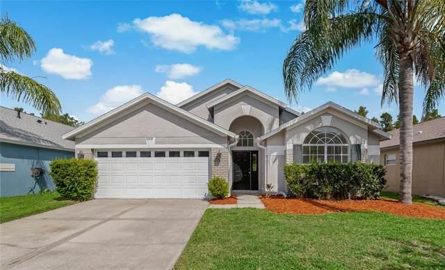 31419 Wrencrest Drive, Wesley Chapel, FL 33543 (MLS #T3312267) :: BuySellLiveFlorida.com