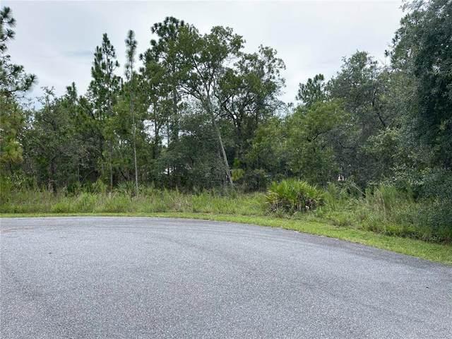 11350 Paoli Court, Weeki Wachee, FL 34614 (MLS #T3312269) :: Baird Realty Group