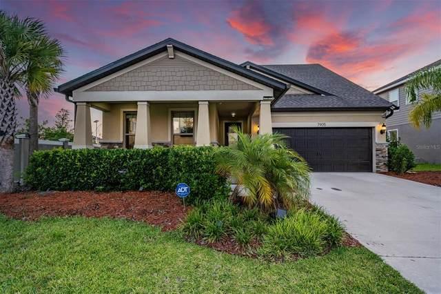 7905 Olive Brook Drive, Wesley Chapel, FL 33545 (MLS #T3312273) :: Delgado Home Team at Keller Williams