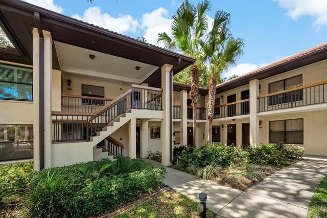 2702 Hammock Court #2702, Clearwater, FL 33761 (MLS #T3312278) :: CENTURY 21 OneBlue