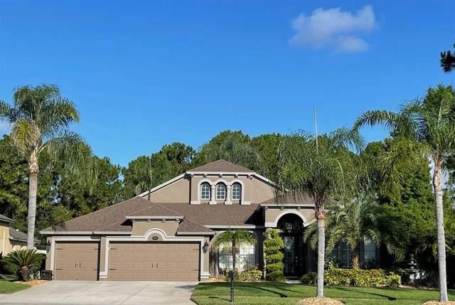 16030 Nikki Lane, Odessa, FL 33556 (MLS #T3312306) :: Pepine Realty