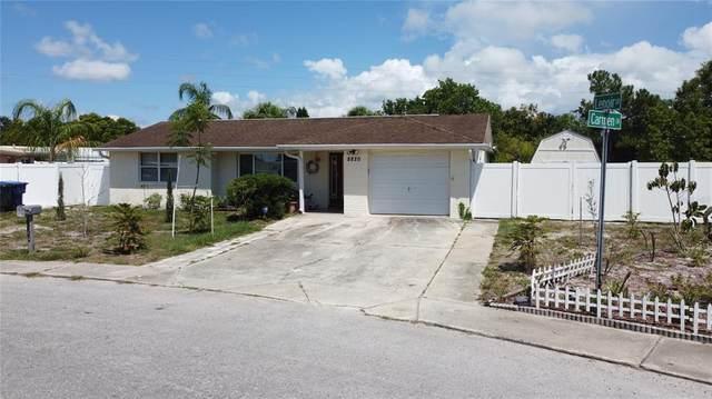 8820 Carmen Lane, Port Richey, FL 34668 (MLS #T3312324) :: Pepine Realty