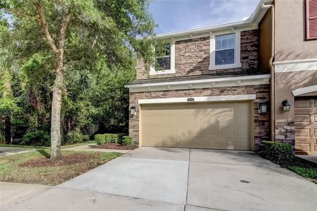 12531 Shirebrook Court, Tampa, FL 33626 (MLS #T3312329) :: Team Bohannon