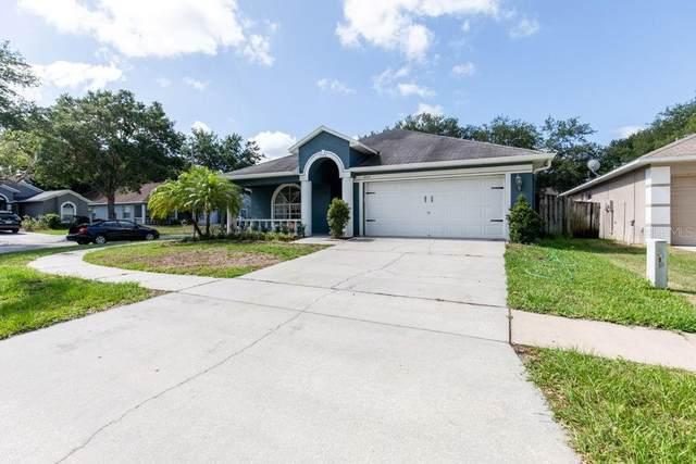 9709 White Barn Way, Riverview, FL 33569 (MLS #T3312347) :: BuySellLiveFlorida.com