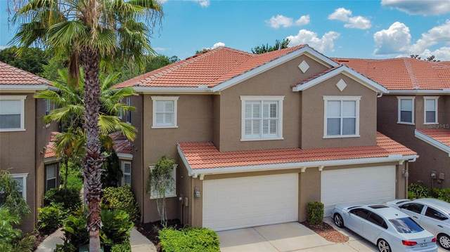 4961 Anniston Circle, Tampa, FL 33647 (MLS #T3312348) :: Cartwright Realty