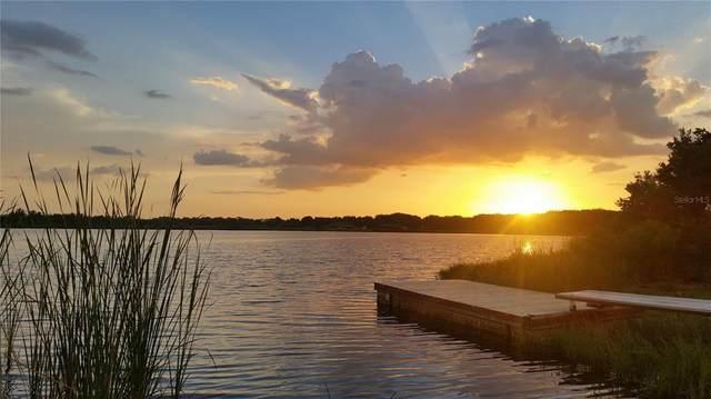 30340 Baylor Lane, Wesley Chapel, FL 33545 (MLS #T3312373) :: Cartwright Realty