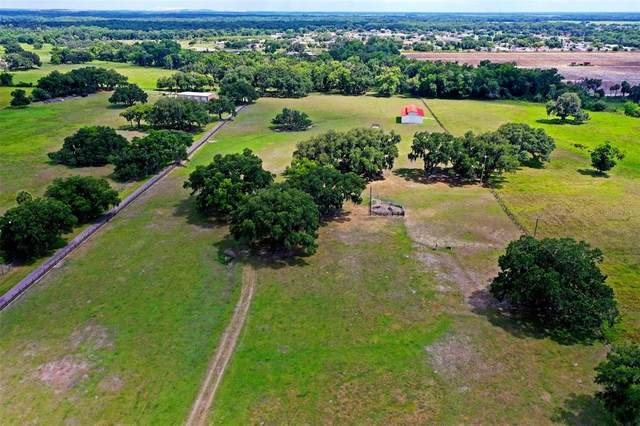 E Trapnell Road, Plant City, FL 33566 (MLS #T3312398) :: Everlane Realty