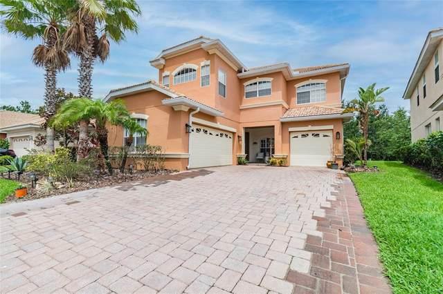 18007 Maui Isle Drive, Tampa, FL 33647 (MLS #T3312415) :: Burwell Real Estate