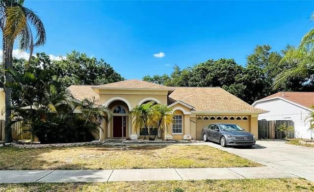 12830 Wallingford Drive, Tampa, FL 33624 (MLS #T3312429) :: RE/MAX LEGACY
