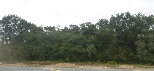 Cortez Boulevard, Dade City, FL 33523 (MLS #T3312466) :: Bridge Realty Group