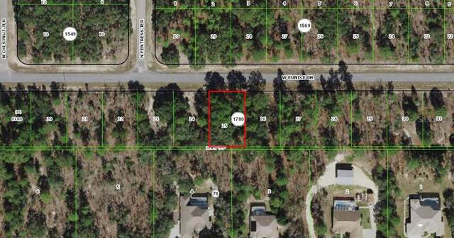 3548 W Eunice Drive, Citrus Springs, FL 34433 (MLS #T3312485) :: Team Turner