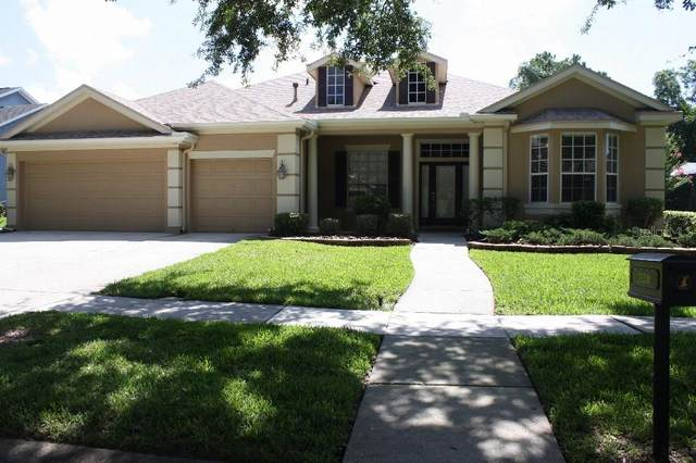 15230 Kestrelrise Drive, Lithia, FL 33547 (MLS #T3312488) :: Everlane Realty