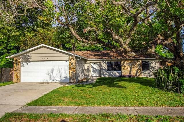 16115 Villa Drive, Hudson, FL 34667 (MLS #T3312526) :: Everlane Realty