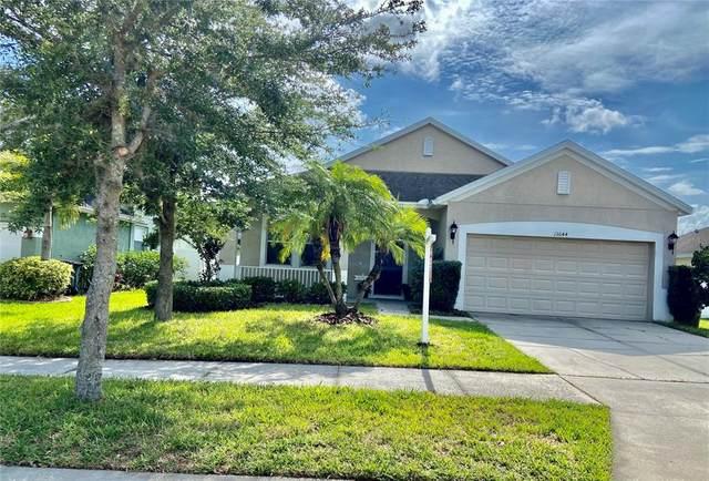 13644 Artesa Bell Drive, Riverview, FL 33579 (MLS #T3312528) :: Everlane Realty