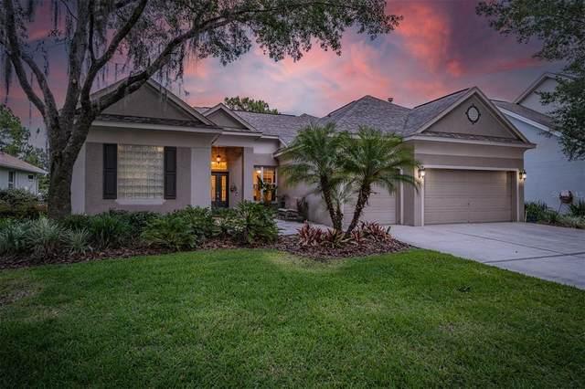 8767 Ashworth Drive, Tampa, FL 33647 (MLS #T3312535) :: Delgado Home Team at Keller Williams