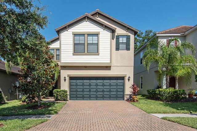 830 Terra Vista Street, Brandon, FL 33511 (MLS #T3312569) :: Everlane Realty