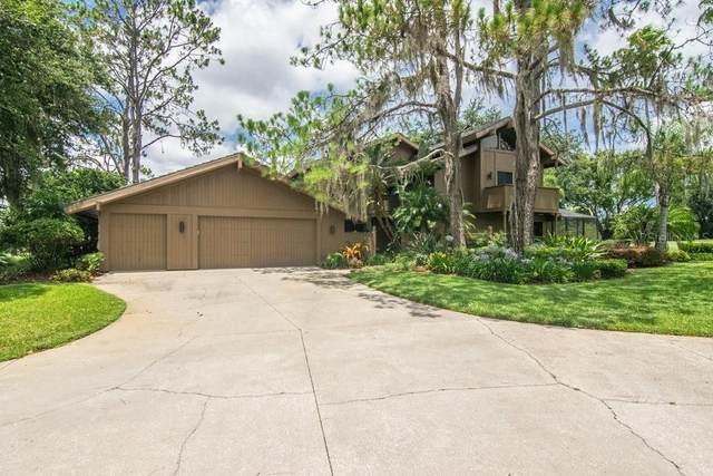 Wesley Chapel, FL 33543 :: Armel Real Estate