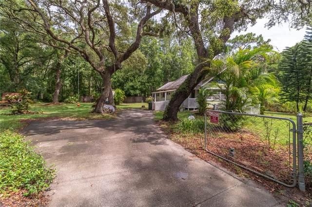 11801 Purdue Street, New Port Richey, FL 34654 (MLS #T3312585) :: Frankenstein Home Team