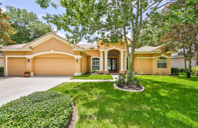 15017 Eaglepark Place, Lithia, FL 33547 (MLS #T3312664) :: The Robertson Real Estate Group