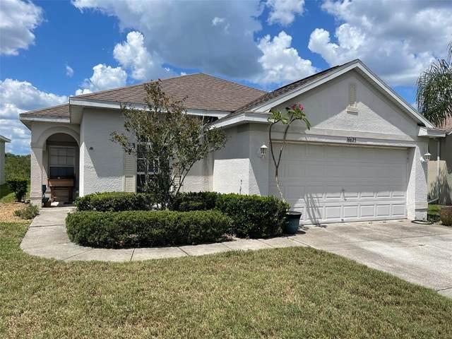 16625 Caracara Court, Spring Hill, FL 34610 (MLS #T3312685) :: Lockhart & Walseth Team, Realtors