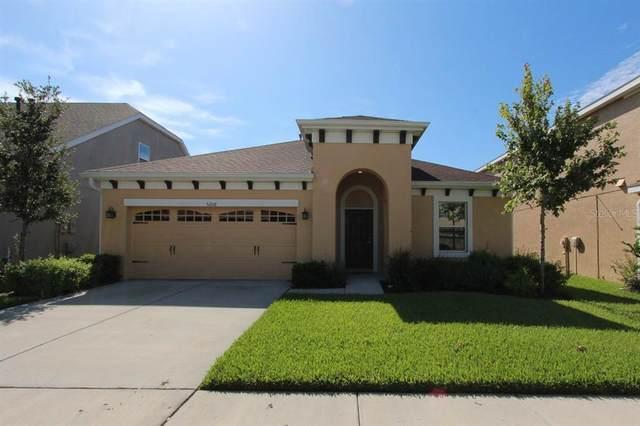 5208 Sanderling Ridge Drive, Lithia, FL 33547 (MLS #T3312688) :: Everlane Realty