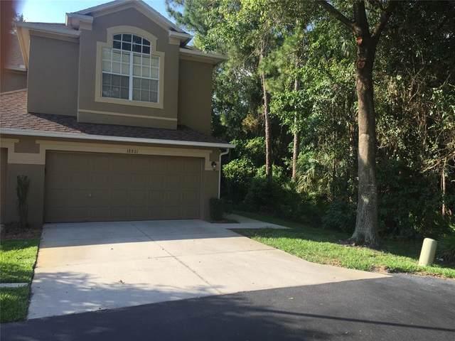18801 Duquesne Drive, Tampa, FL 33647 (MLS #T3312694) :: BuySellLiveFlorida.com