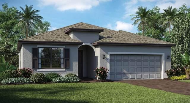 15904 Honeysuckle Street, Port Charlotte, FL 33953 (MLS #T3312730) :: The Hesse Team
