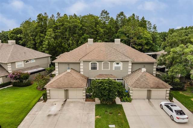14092 Trouville Drive, Tampa, FL 33624 (MLS #T3312734) :: Everlane Realty