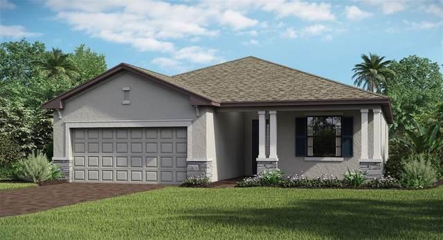 15912 Honeysuckle Street, Port Charlotte, FL 33953 (MLS #T3312738) :: The Hesse Team