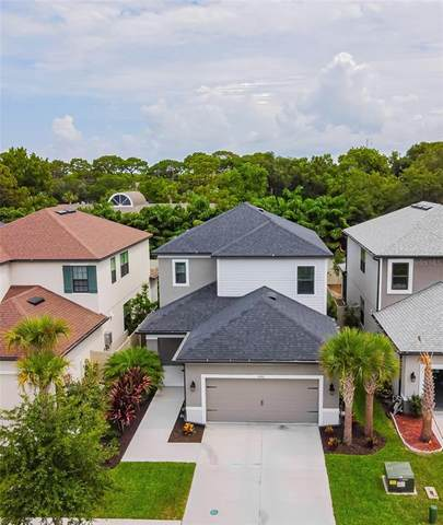 8881 Arabella Lane, Seminole, FL 33777 (MLS #T3312741) :: Your Florida House Team