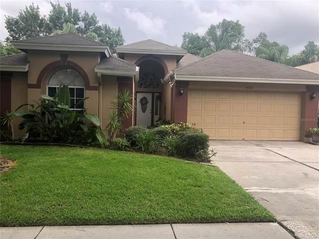 5652 Paddock Trail Drive, Tampa, FL 33624 (MLS #T3312743) :: Everlane Realty