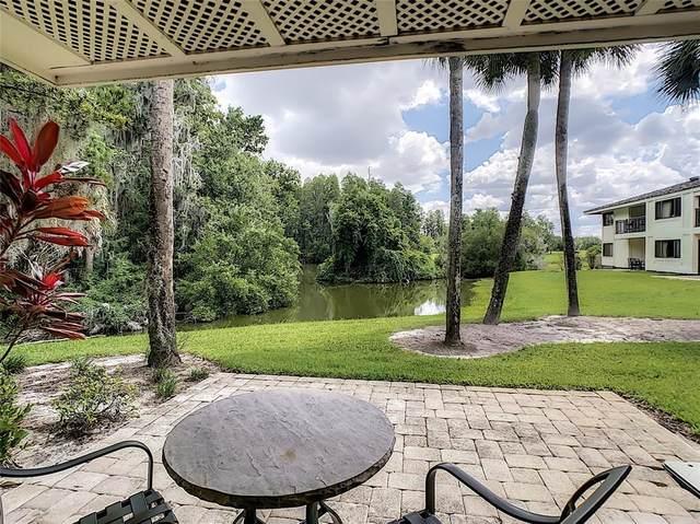 4786 Fox Hunt Drive #717, Wesley Chapel, FL 33543 (MLS #T3312762) :: Premium Properties Real Estate Services