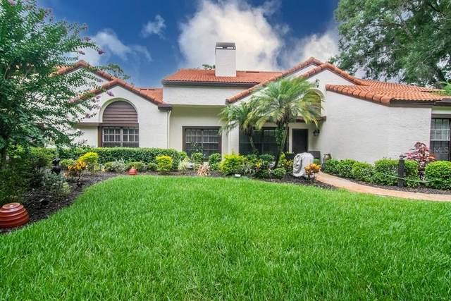 Wesley Chapel, FL 33543 :: The Hesse Team
