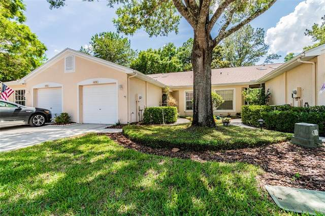 4472 Connery Court, Palm Harbor, FL 34685 (MLS #T3312832) :: Medway Realty