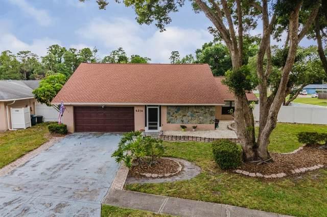 5216 Carrollwood Meadows Drive, Tampa, FL 33625 (MLS #T3312833) :: Everlane Realty