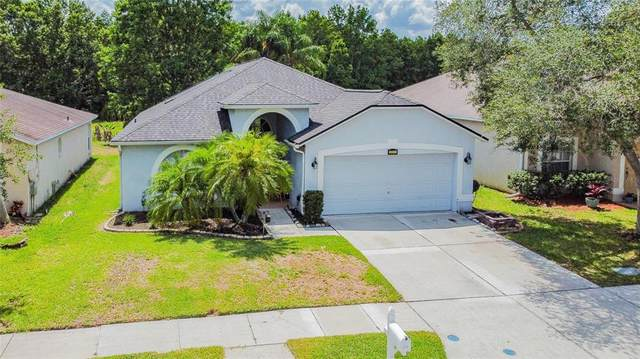 3511 Golden Eagle Drive, Land O Lakes, FL 34639 (MLS #T3312843) :: Kelli and Audrey at RE/MAX Tropical Sands