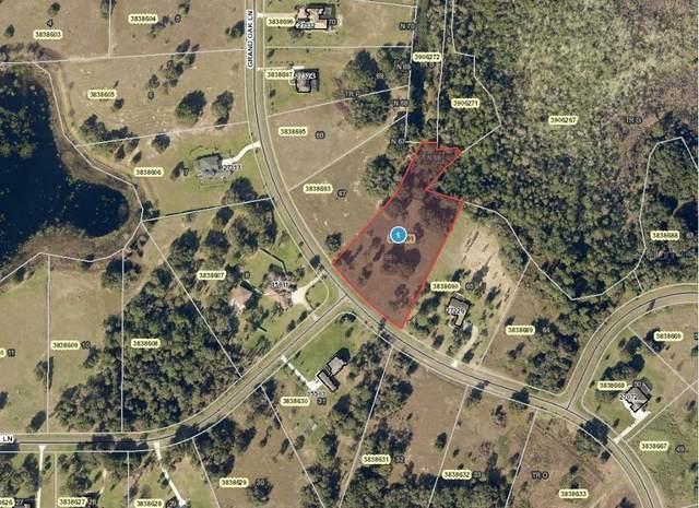 Grand Oak Lane, Tavares, FL 32778 (MLS #T3312856) :: Expert Advisors Group