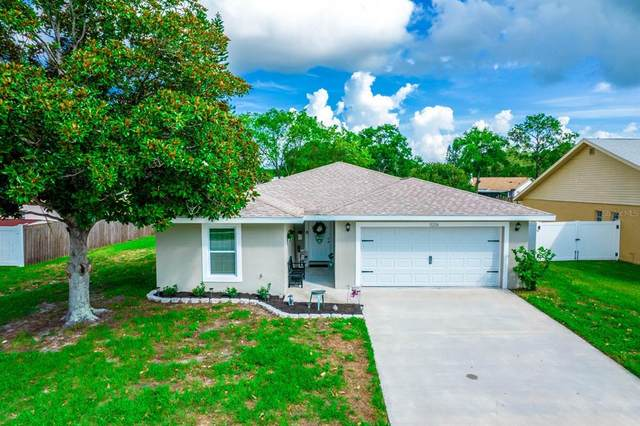 11226 Fiddlewood Drive, Riverview, FL 33579 (MLS #T3312897) :: Everlane Realty