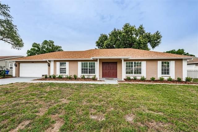 13301 Moran Drive, Tampa, FL 33618 (MLS #T3312900) :: Medway Realty