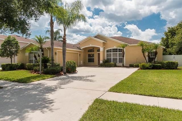 17128 Falconridge Road, Lithia, FL 33547 (MLS #T3312926) :: Your Florida House Team