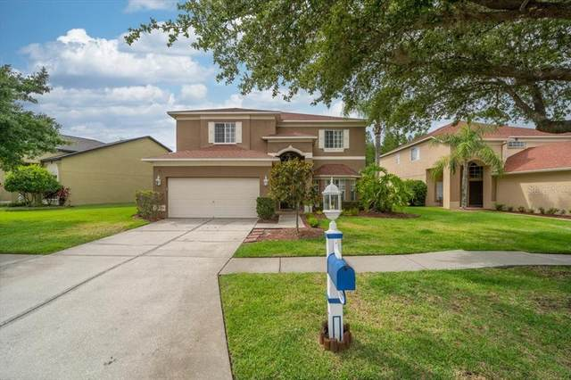 4227 Harbor Lake Drive, Lutz, FL 33558 (MLS #T3312933) :: Griffin Group